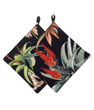Botanica Aloe - Black- SET OF 2