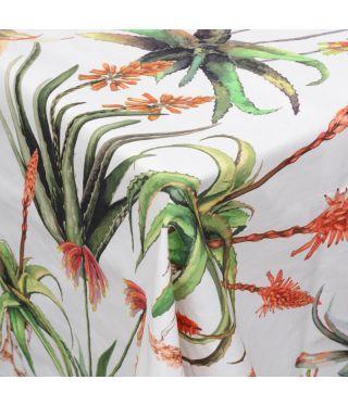 Botanica Aloe - White