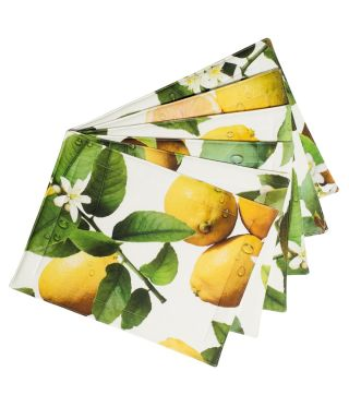Botanica Lemon Placemats Pack of 6