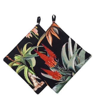 Botanica Aloe - Black- SET OF 2